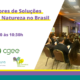 Webinário Grupo de Atores de SbN no Brasil (com Fluxus, ICLEI & CGEE)