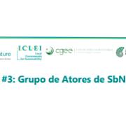 Webinário #3: Grupo de Atores de SbN no Brasil